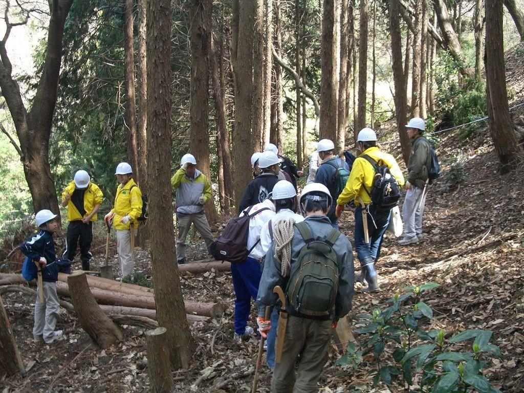 高安山自然再生活動