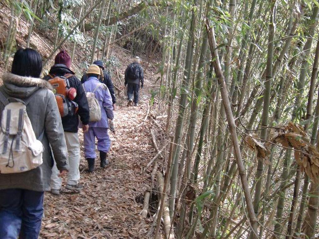 楽音寺森林整備